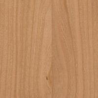 Baumarten Holzsorten
