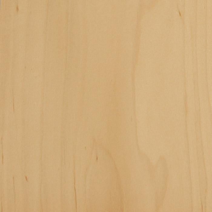 Birke Holz holzsorten birke